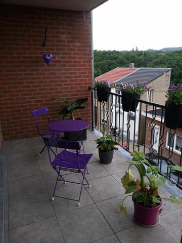 Appartement - Seraing Jemeppesur-Meuse - #3749416-3